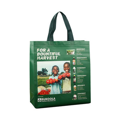 Custom Non Woven Promotional Bags with Lamination for Supermarket